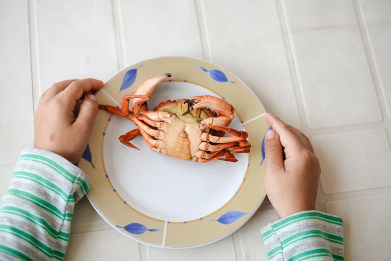 Trẻ mấy tháng ăn được thịt cua biển?