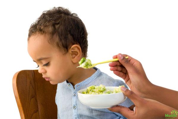 Nguyên nhân trẻ biếng ăn kém hấp thu